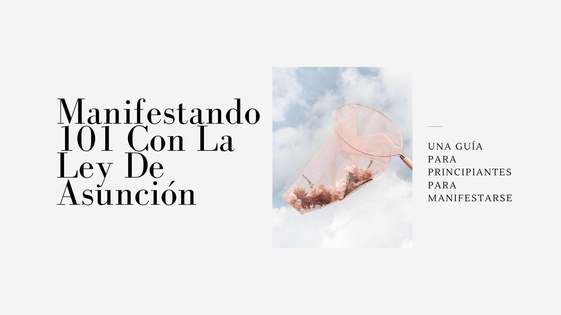 Manifestando 101 Con La Ley De Asunción